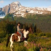 Half Off from Bardy's Trail Rides in Seward