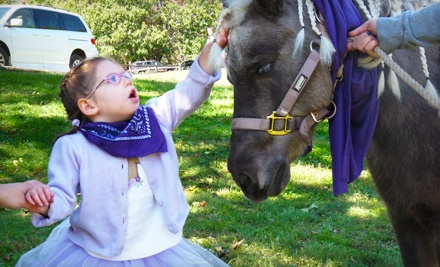 $10 Donation to Special Equestrians Therapeutic Riding Program - Special Equestrians  in Warrington
