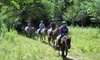 Up to 46% Off Trail Ride at Carousel Horse Farm