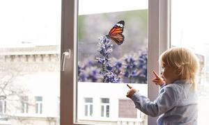 Film de fenêtre personnalisable