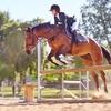 Up to 62% Off Horseback Riding Camp at BM Equine