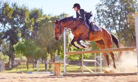 Cuatro u ocho clases de equitación en Club Hípico Deportivo La Cruzada (hasta 50% de descuento)