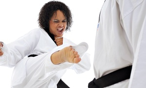 Cage Fitness at Stomp Ground Martial Arts: $50 for $100 Toward One Month of Classes — Stomp Ground Martial Arts