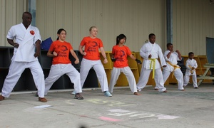 Moring-san Martial Arts: Four Weeks of Unlimited Martial Arts Classes at Moring-San Martial Arts (40% Off)