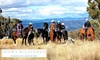Jindabyne: 3N Break with Horseback Tour