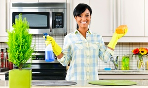 MJ Florida Best Cleaning Services: $68 for Three Hours of House Cleaning Services — MJ Florida Best Cleaning Services (55% Off)