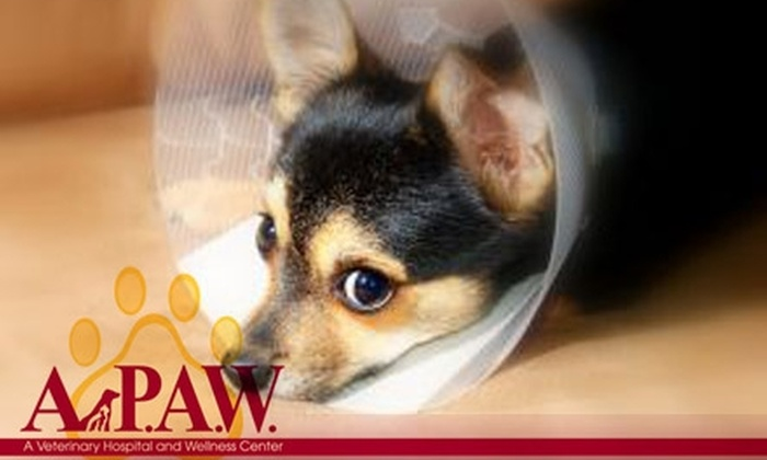 A.P.A.W. Veterinary Hospitality and Wellness Center - Goddard: $60 for $125 Worth of Boarding and Health Services at A.P.A.W. Veterinary Hospital and Wellness Center
