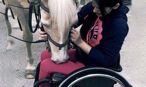 EQUITACION TERAPIA: Paseo a caballo guiado pie a tierra o en monta gemela con opción a acompañante desde 19,95 € en Equitación como Terapia