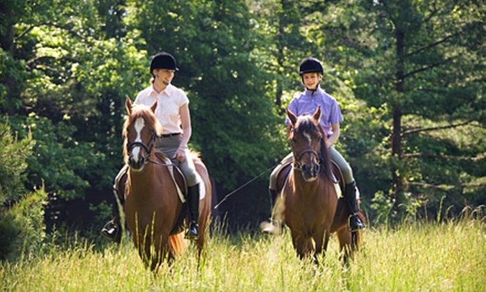 Reno Riding - Blue Heron Park: One Private Riding Lesson, One Trail Ride for Two, or Horse-Management and Riding Lessons for Two at Reno Riding