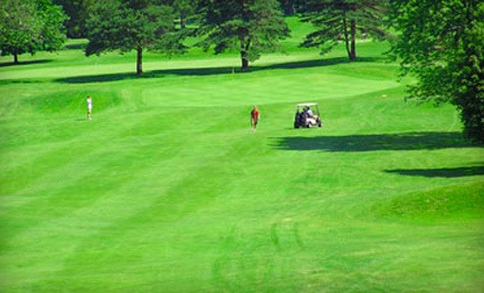 Golf for 2, Including 18-Hole Round of Golf for 2, Cart Rental, and Choice of 2 Burgers or Sandwiches Served with Fries  - Bald Mountain Golf Course in Lake Orion