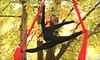 Up to 61% Off Beginning Aerial Circus Classes