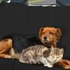 Fine Pets Car Seat Cover
