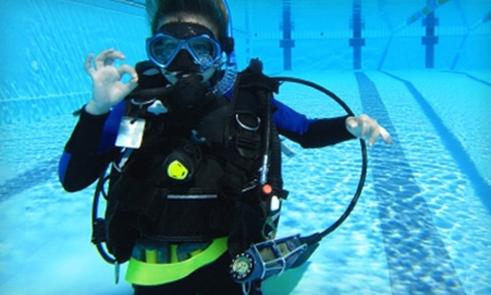 The Great American Diving Company - Multiple Locations: $10 for a Discover Scuba Introductory Class at The Great American Diving Company ($25 Value)