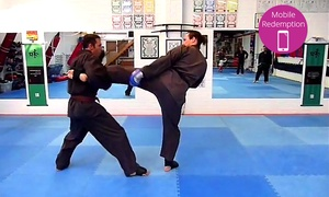 The Dojo: Unlimited Martial Arts Classes for One ($15), Two ($25) or Three Months ($35) at The Dojo (Up to $375 Value)