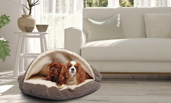 Plush Corduroy Sherpa-Lined Pet Cave Bed