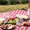 52% Off Mediterranean Summer Picnic from Le Petit Terroir