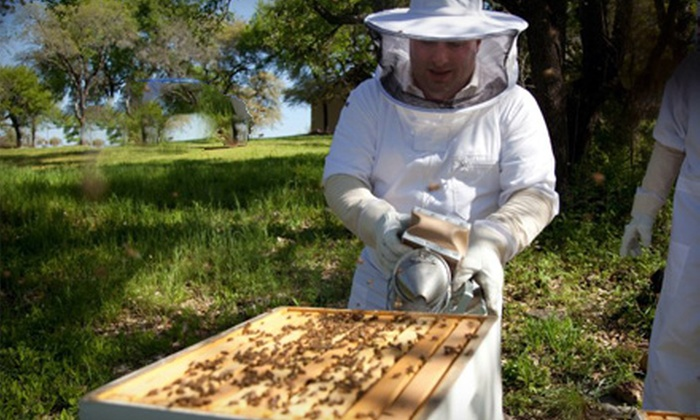 Round Rock Honey - Round Rock: Introductory Beekeeping Class for One or Two at Round Rock Honey