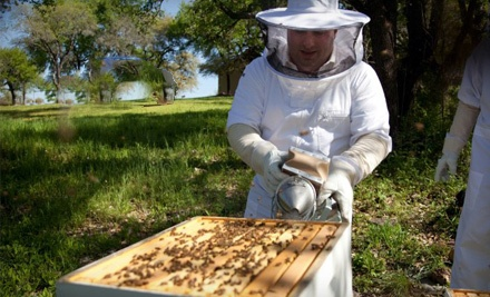 Intro to Beekeeping Class for 1 (a $125 value) - Round Rock Honey in Round Rock