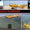Gauntlet Warbirds  - Chicago: $160 for 30-Minute Flight with Aerial Acrobatics from Gauntlet Warbirds ($275 Value)