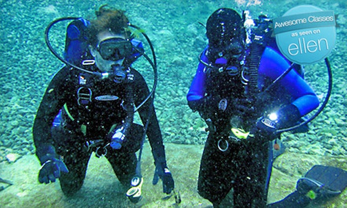 Chattahoochee Scuba and Swim Center - Columbus: One Scuba Lesson or Eight Swimming Lessons at Chattahoochee Scuba and Swim Center