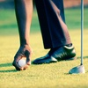 Half Off 6-Course Wisconsin Golf Tour