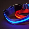 Series 5000 Ultra-Bright LED Collars and Leashes