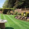 100 Square Metre Lawn Treatment