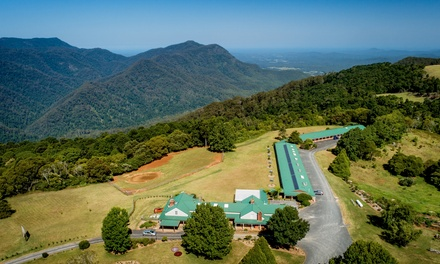 Dorrigo: 13 Nights for Two or Four with Wine, Chocolates, Late CheckOut and Breakfast at Lookout Mountain Retreat