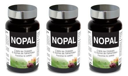 60 ou 90 jours de cure Nopal, capteur de graisses aidant à contrôler lappétit