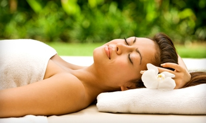 Alternative Health and Beauty Salon and Spa - Colonial View Civic Club: $50 for $100 Worth of Natural Spa Services at Alternative Health and Beauty Salon and Spa