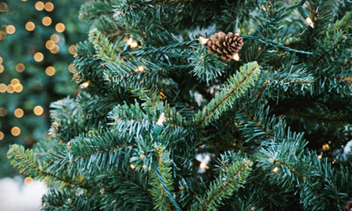 51% Off from Portland Christmas Tree Delivery - Portland Christmas ...