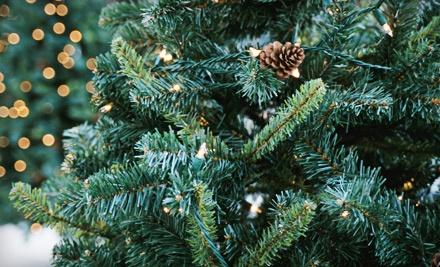 Portland Christmas Tree Delivery - Portland Christmas Tree Delivery in