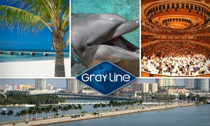 Gray Line Miami - Multiple Locations: $24 for a Two-Day Pass for The Hop On Hop Off Sightseeing Tour from Gray Line Miami