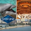 Up to 51% Off from Gray Line Miami