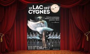Ballet Theatre: 1 place en catégorie 1 ou 3 pour ''Le Lac des Cygnes'', date au choix, dès 31,50€ à Liège, Louvain-la-Neuve ou Bruxelles