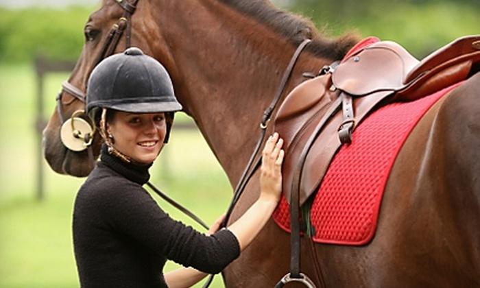 Caughman Farms - Eastover: $17 for One Horseback-Riding Lesson ($35 Value) or $50 for Four Horseback-Riding Lessons ($100 Value) at Caughman Farms in Eastover