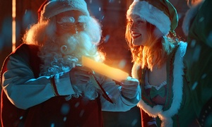 Elfi: Pacchetto da parte di Babbo Natale con lettera, diploma, cartolina, adesivo e busta Gold con Elfi (sconto 40%)