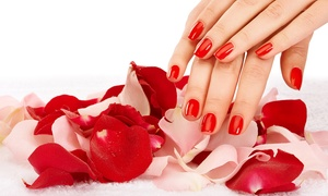 Up to 24% Off Mani-Pedi at Lily's Nail Spa and Hair Salon at Lily's Nail Spa and Hair Salon, plus 6.0% Cash Back from Ebates.