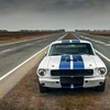 Up to 42% Off Racing Stripes at The Decal Shoppe