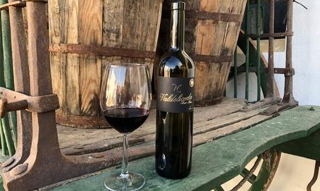 Visita a bodega para 2 o 4 con cata de vino y opción a viaje en tren en Bodega Del Nero (hasta 37% de descuento)