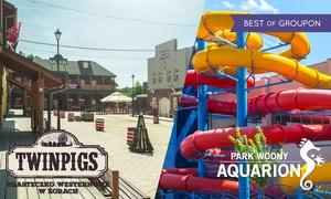 Miasteczko Westernowe TwinPigs, Park Wodny Aquarion, Muzeum Ognia : 1 bilet 2 parki: Miasteczko TwinPigs oraz Park Wodny Aquarion od 53,99 zł i więcej opcji (do -41%)