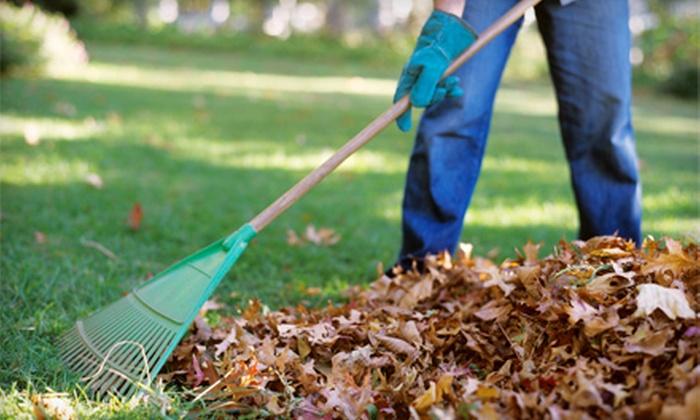 Clean Sweep Building Maintenance - Calgary: Fall Lawn Cleanup or Fall Lawn Cleanup with Aeration and Fertilization from Clean Sweep Building Maintenance