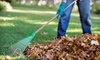 Up to 70% Off Fall Lawn Cleanup Services