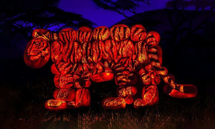 Rise Of The Jack Olanterns In Los Angeles Ca Groupon