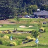 Up to 55% Off Golf Outings in Pleasant Hill
