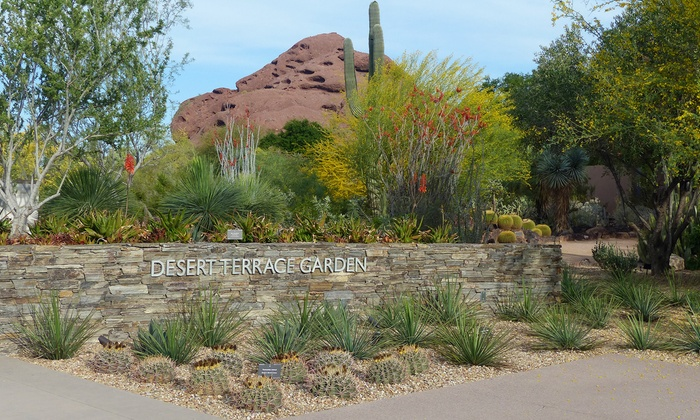 Desert Botanical Garden - Phoenix: One-Year Membership to the Desert Botanical Garden (Up to 46% Off). Two Options Available.