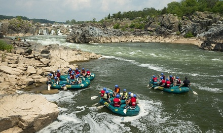 Four Hours of Rafting for One, Two, or Four People from Calleva (Up to 50% Off)