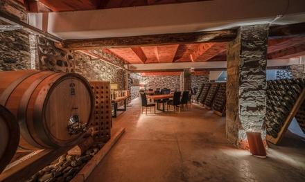 Degustazione di vino con visita a 16,90€euro