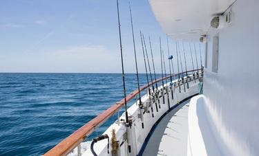 Shark fishing charter trip reel sharp sport fishing for Groupon deep sea fishing
