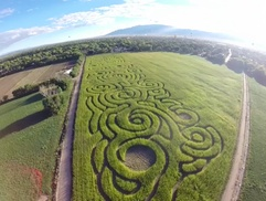 Up to 38% Off Admission to Maize Maze at Rio Grande Community Farm and Tres Hermanas Farm, plus 6.0% Cash Back from Ebates.